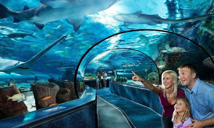 Ripley's Aquarium of Myrtle Beach
