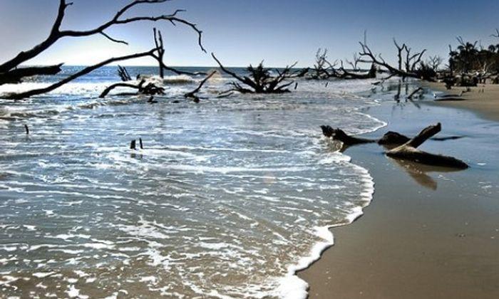 Bull Island Ferry-Cape Romain National Wildlife Refuge
