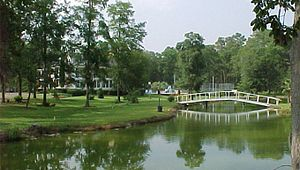 Bostick Plantation