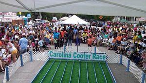 Spring Cooter Fest
