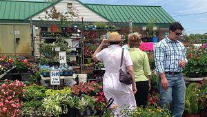 Piedmont Plant and Flower Festival