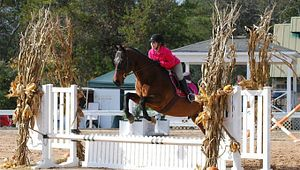Riverbend Equestrian Center
