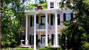 The Pink Dolphin B & B