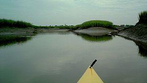 Beaufort Kayak Tours