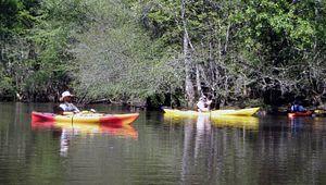 RiverRat's Canoe Rentals
