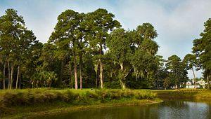 Golden Bear Golf Course