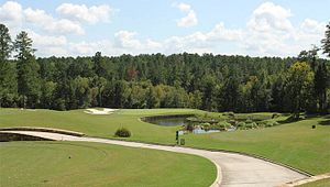 Mount Vintage Plantation - Independent  Course