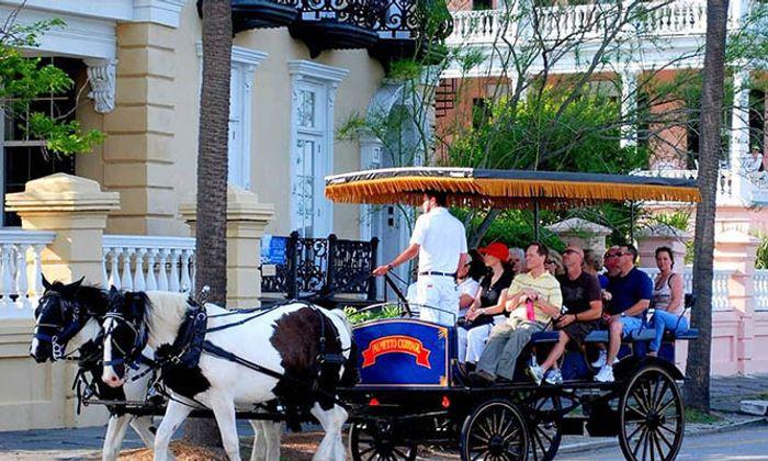 Palmetto Carriage Tours