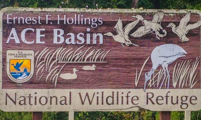Ernest F. Hollings Ace Basin National Wildlife Refuge
