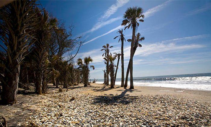 Botany Bay Plantation Heritage Preserve & Wildlife Management Area