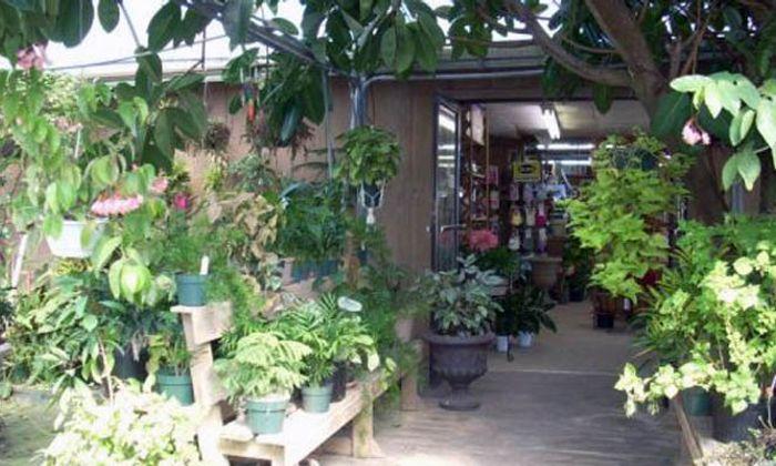 Indigo Farms Produce and Garden Center