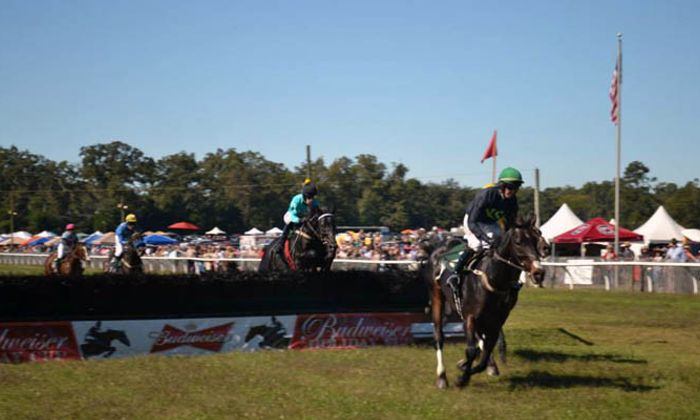 Aiken Fall Steeplechase